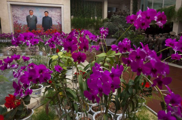 An image of North Korea's late leaders Kim Il Sung and Kim Jong Il hangs at an exhibition of flowers known as Kimjongilia and Kimilsungia in Pyongyang. (AP Photo/David Guttenfelder)