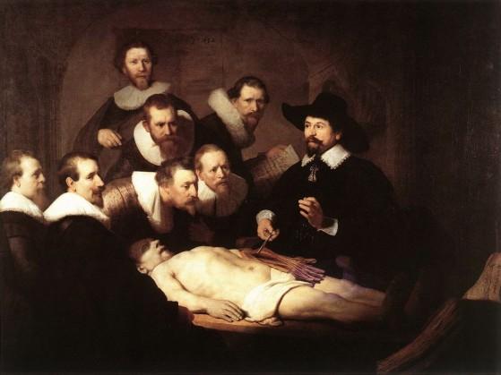 rembrandt_anatomy