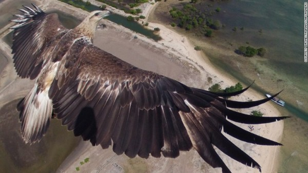 151013171500-dronestagram-eagle-exlarge-169