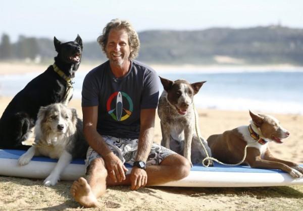 Сёрфинг для собак. Австралиец учит покорять волну вместе с питомцем