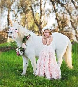 unicorn 4