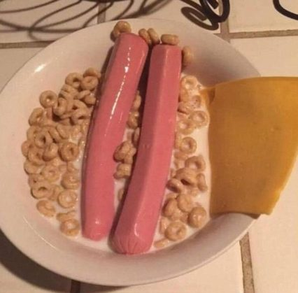 335B46D500000578-0-This_Reddit_user_described_his_disgusting_looking_meal_as_Gourme-m-2_1461140896895