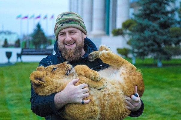 Кадыров рамзан свадьба племянника кадырова