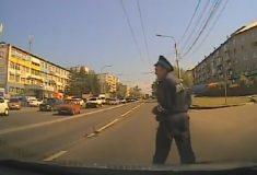 «Премию дяди Стёпы». Полицейский из Красноярска помогает утке с утёнком перейти дорогу