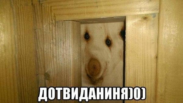 https://medialeaks.ru/wp-content/uploads/2016/08/1470638197124567414.jpg