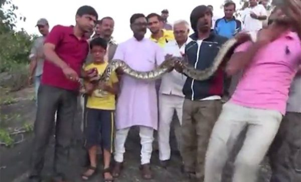 Selfie snake attack http://video.metro.co.uk/video/met/2016/09/28/7415439584242610988/960x540_MP4_7415439584242610988.mp4