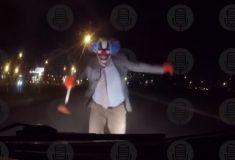 «Безумец, ***». В Петербурге тоже появились страшные клоуны, но у них не получилось