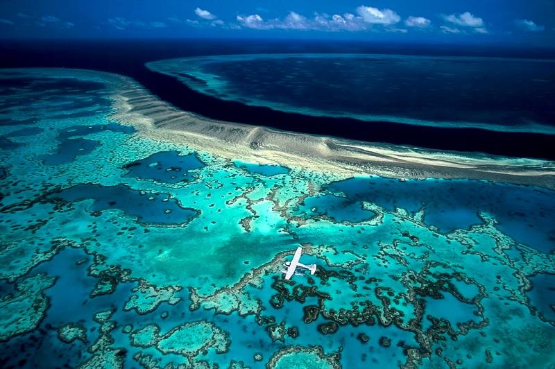 Результат поиска для большой барьерный риф