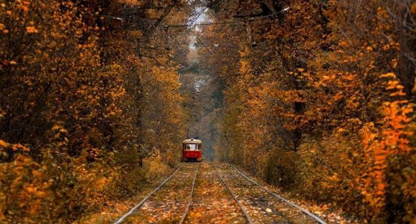 tram-kiev-puscha