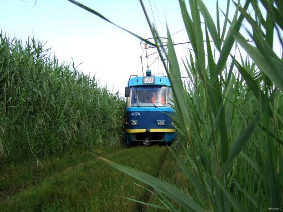 tram-odessa