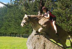 Эта корова из Новой Зеландии думает, что она — лошадь. А почему бы и нет