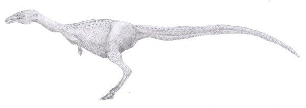limusaurus-04