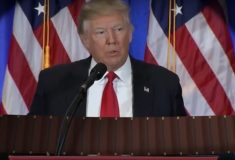 Видео: Что будет, если дать Дональду Трампу в руки аккордеон