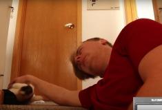Парень 11,453 раза с укором посмотрел на своего кота и снял это на видео