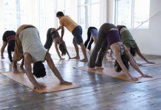 «Пришли за йогами». Как борцы с сектами с помощью «закона Яровой» запрещают йогу в Петербурге