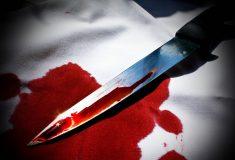 Выборгские следователи раскрыли бытовое убийство спустя 25 лет