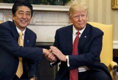 Схватить и притянуть. Дональд Трамп и его странная манера пожимать руки