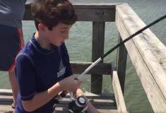 Аллигатор-лентяй выждал, пока мальчик поймает рыбу, и перехватил улов