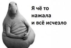 «Зато не видно мемов про Шурыгину». Во «ВКонтакте» из-за сбоя не показываются изображения