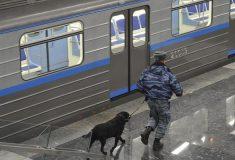 «Дожили 😂😂😂». В социальных сетях обсуждают обыски в метро и рамки металлодетекторов
