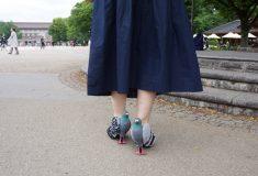 Японка сделала туфли в виде голубей и опубликовала инструкцию, как создать такие же