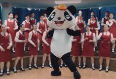 Китай рекламирует новый шёлковый путь клипом с пандой. И очень приставучей мелодией