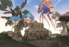 Фаната Morrowind спасла от пули коллекция дисков с любимой игрой, и разработчики оценили эту жертву