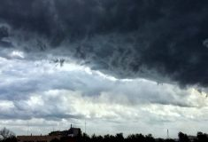 В Москве — ураган, есть погибшие. Подборка фото и видео столичной непогоды