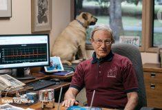 Изобретатель придумал, как лучше предсказывать цунами, но всем интересна только его собака