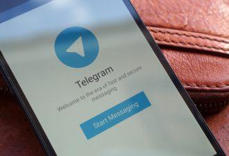 «Террористы дышали воздухом». Интернет встал на защиту Telegram, которому власти всерьёз грозят блокировкой
