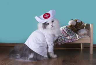 Как я лечила простуду с помощью интернет-доктора, а обнаружила кое-что посерьёзней