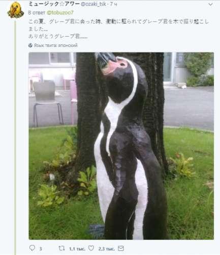 ВЯпонии скончался известный пингвин, который влюбился вкартонную аниме-девочку