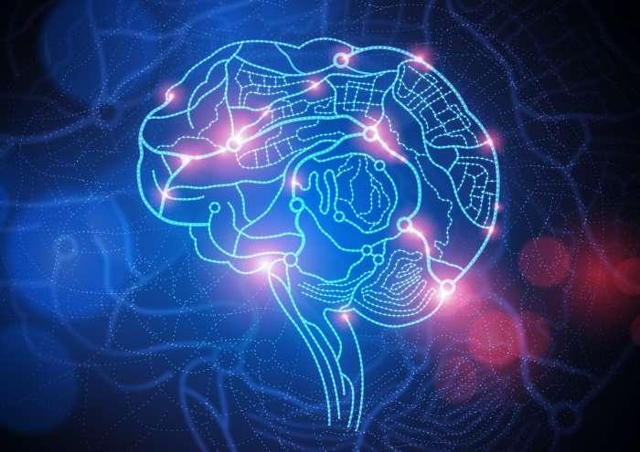 Как прокачать мозг и почувствовать себя глупым, но в итоге заставить его работать