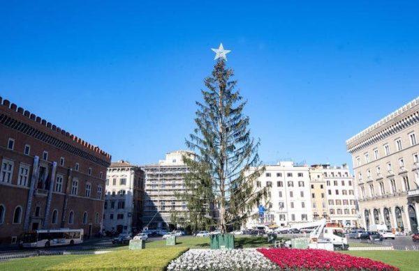 Итальянцы высмеяли главную елку страны, назвав ее«лысой» и«туалетной щеткой»