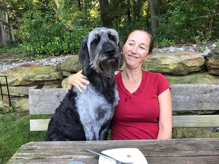 Семья из США потратила $7 тысяч на поиски пса. Его пока не нашли, зато помогли восьми собакам вернуться домой