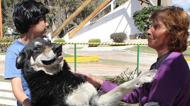Пёс остался верен умершему хозяину и охранял его могилу до конца своей жизни