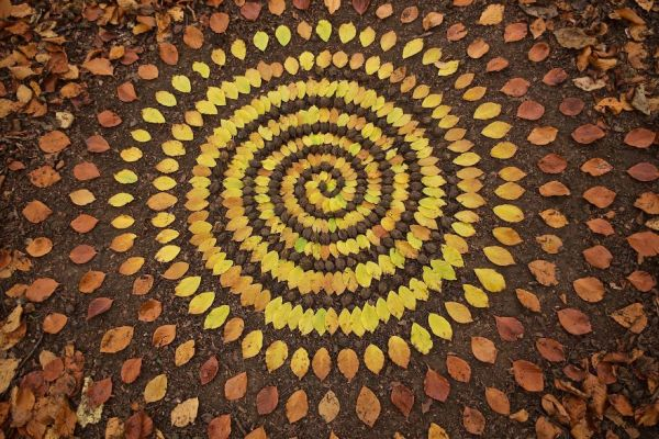Стоунхеджи нашего времени. Художник складывает камешки и листья в узоры, на которые можно смотреть вечно