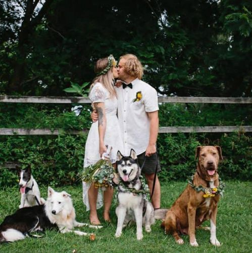 Пара сэкономила на свадьбе и наняла оператором свою собаку. Пёс заснял такие кадры, что профи не под силу