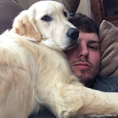 Собаки приносят хозяевам странные вещи. Что с этим делать? Рассказываем на примере одного ретривера