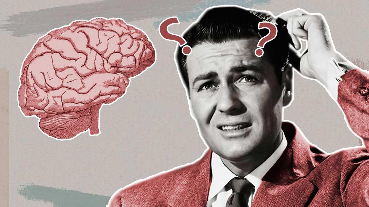 Как разбудить мозг? Обзор умного тренажера, с которым вы станете полиглотом и не только