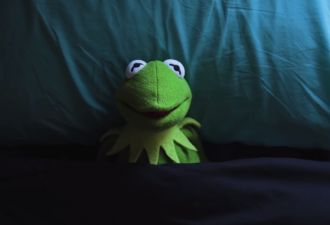 «Я и инстаграм бывшей». Видео с падением лягушонка Кермита стало мемом обо всём, о чём мы жалеем