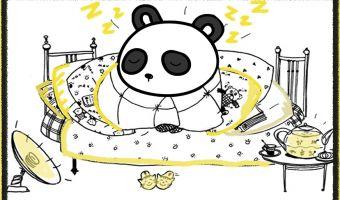 Панда, которая создана для того, чтобы спать. Не узнаёте в ней себя — нет у вас сердца