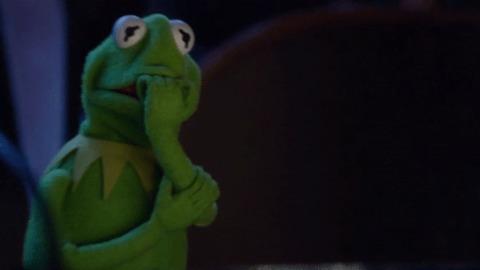 «Я и инстаграм бывшей». Лягушонок Кермит знает, о чём мы пожалеем, и мем с падением тому доказательство