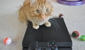 Инструкция. Как обойти блокировку PlayStation Network