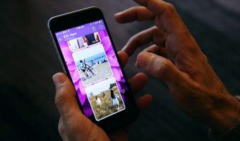 «Жить без фото котов от мам?» Люди узнали о возможной блокировке Viber и не на шутку взволновались