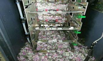 Обед стоимостью в миллион. Мыши залезли в банкомат и оставили от всех денег там лишь клочки бумаги