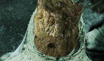 Это статуя или призрак? Нет, просто гусеницы плетут себе кокон размером с грузовик