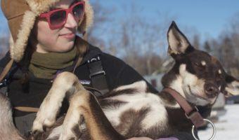 Бесконечные щенки! Как живёт профессиональная гонщица на собачьих упряжках (зашкаливающее количество милоты)