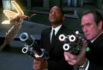 В Пенсильвании пара расстреляла светлячков, приняв их за инопланетян. Соседи пережили целое шоу