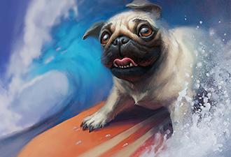 Собаки провели чемпионат по сёрфингу на волнах Тихого океана. Получился спорт, который делает счастливым